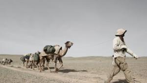 gobi_leading_camels