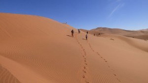 namibia_walking