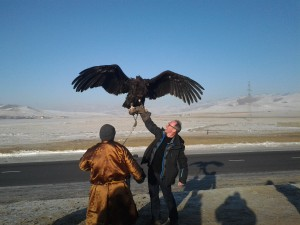 gordon vulture